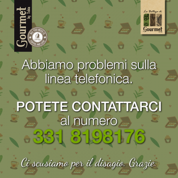 Problems with the telephone line